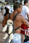 子犬をおんぶする過保護マッチョマン